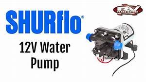 Rv Water Pump Shurflo 12 Volt 4008-101-e65