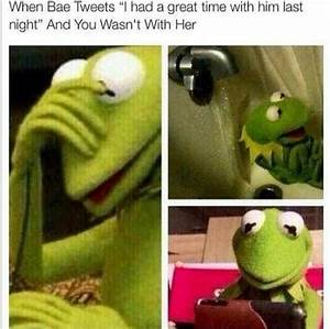 Top 20 Funniest Kermit The Frog Memes | Funny Picture