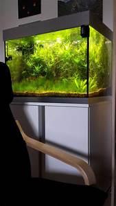 Eheim Proxima 175 : 175 liter killifischbecken aquarium forum ~ Orissabook.com Haus und Dekorationen
