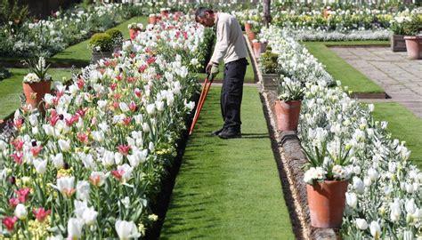 a beautiful memorial garden has opened at kensington