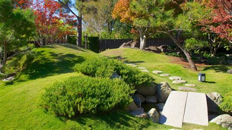 san antonio botanical gardens san antonio botanical gardens in san antonio expedia