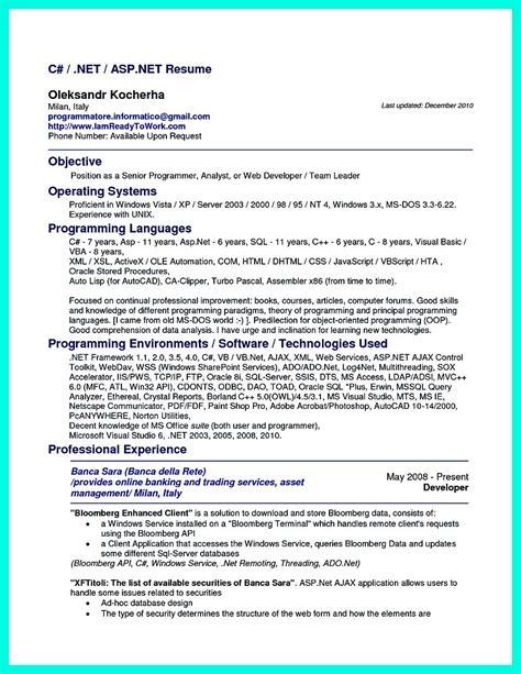 computer programmer resume examples  impress employers