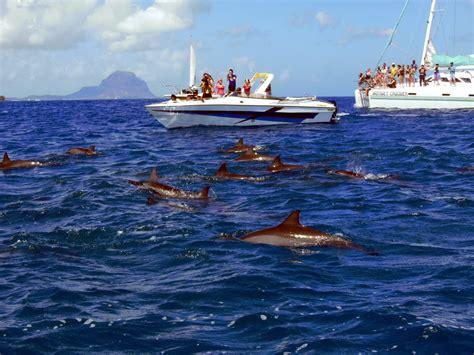 turisti per caso mauritius tamarin mauritius viaggi vacanze e turismo turisti per