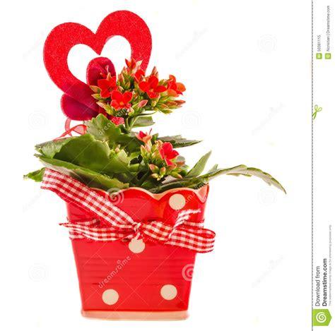 bureau de poste nanterre coeur de en pot 28 images fleurs coeur de comparer 28