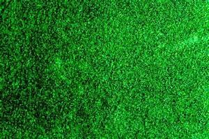 1000+ Beautiful Grass Background Photos · Pexels · Free ...