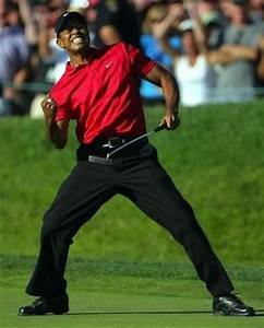 Tiger woods fist pump picture
