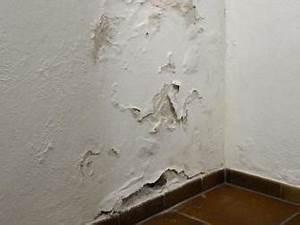 Nasse Wand Innen Abdichten : so dichten sie eine feuchte kellerwand von innen ab bauhaus ~ Sanjose-hotels-ca.com Haus und Dekorationen