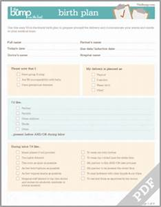 tool birth plan With birth plan template australia