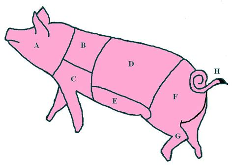 file diagram of pork cuts on a pig jpg wikimedia commons