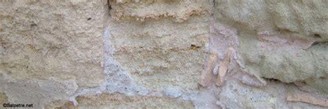 comment traiter le salpetre sur un mur interieur comment traiter le salpetre sur un mur exterieur la r 233 ponse est sur admicile fr