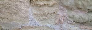 comment traiter le salpetre sur un mur exterieur la With comment traiter le salpetre sur un mur interieur
