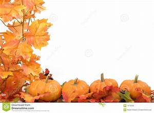 Pumpkins With Fall Leaves Stock Photography - Image: 1470232