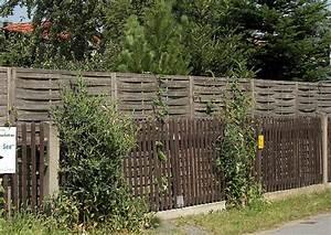 Aus Welchem Holz Baut Man Einen Bogen : hoher sichtschutz hohe sichtschutzw nde bauen pergola und zaun ~ Orissabook.com Haus und Dekorationen