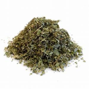 Verveine Plante Tisane : tisane verveine odorante bio lippia citriodora feuille cp e en vrac ~ Mglfilm.com Idées de Décoration