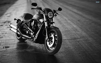 Harley Davidson Wallpapers Vehicles Wallpaperplay