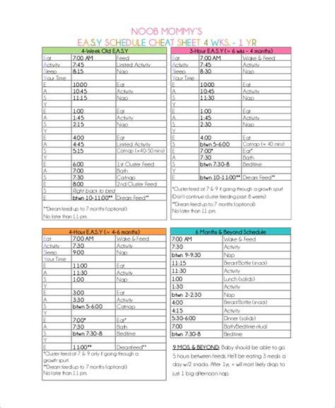 sample schedule  examples   word excel