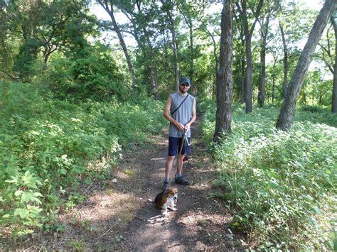 hill trail knob hill trail 7 20 13 wanderings Knob