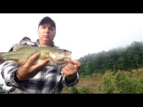 North Bend West Virginia Largemouth Bass Youtube