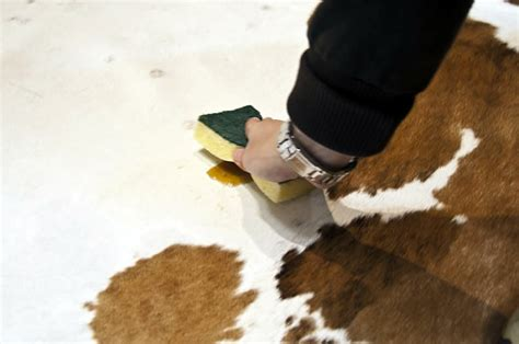 How Do You Clean A Cowhide Rug by Cowhide Cleaning Care Furhomerugs