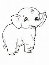 Elephant Coloring Pages Printable Baby Cute Animals sketch template