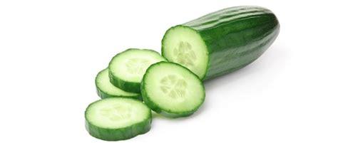 Afbeeldingsresultaten voor komkommer