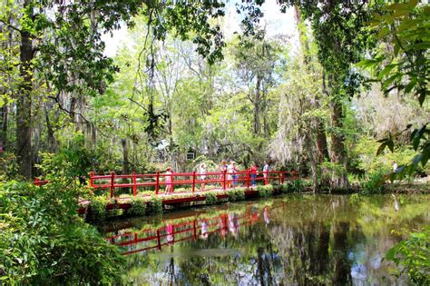 magnolia plantation and gardens magnolia plantation and gardens in charleston sc setarra