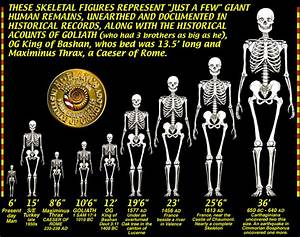 Archeology - Have Giant Human Skeletons Been Found