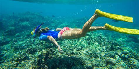 snorkeling  hawaii  underwater spots    nemo