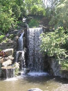 los angeles county arboretum and botanic gardens it39s a With los angeles county arboretum and botanic garden