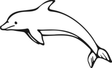 dolphins colors dolphin pictures to color home animals fish