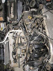 Ford Focus Starter Location Pictures To Pin On Pinterest