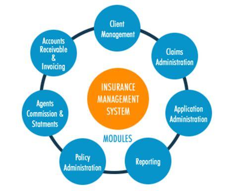 insurance management   positive