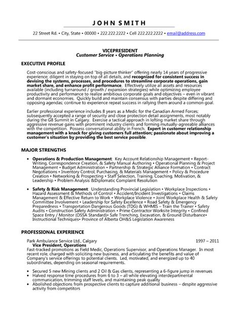Vice President Operations Resume Template by Resume Format Resume Format Vice President