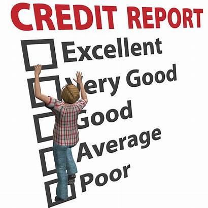 Credit Report Repair Score Background History Establish