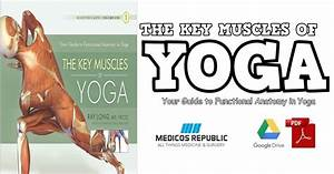 Key Muscles Of Yoga  Your Guide To Functional Anatomy In