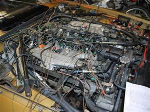 V12 Fuel Injection Wire Harness - Jaguar Forums
