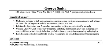 Resume Executive Summary Exle by Phd Resume With Executive Summary Summary For Resume For