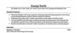 resume examples How To Write A Executive Summary Resume