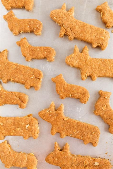 What are the best dog biscuits for my dog? Corgi Dog Biscuit Treats - Homemade Dog Biscuits and Treats