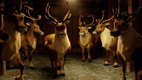 Reindeer Wallpaper Hd by Reindeer Wallpaper The Best 70 Images In 2018