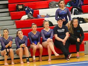 High School Gymnastics Team