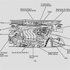 98 Vw Jettum Engine Diagram