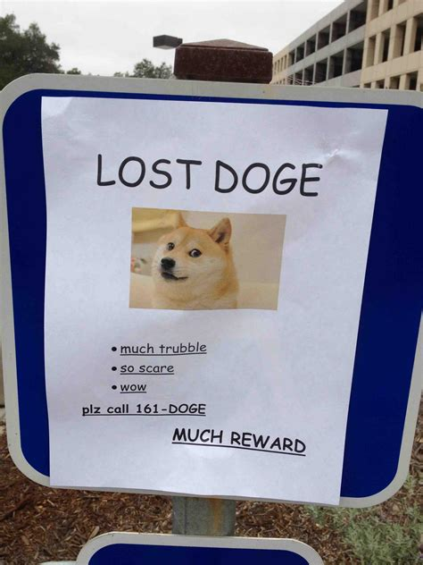 Much Dog Meme - image 620987 doge know your meme