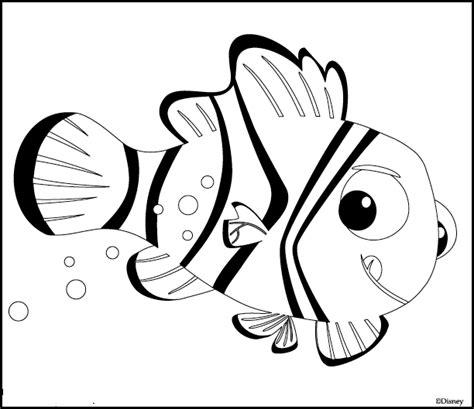 Black And White Angel Fish Nemo
