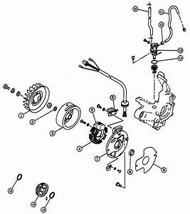 50cc Scooter Fuel Line Diagram