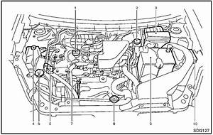 Engine Compartment Check Locations    Maintenance And Do