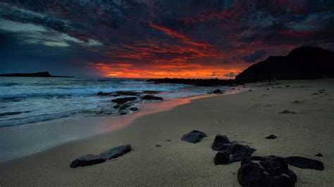beach dark luxury night