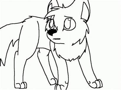 Wolf Drawing Drawings Related Getdrawings