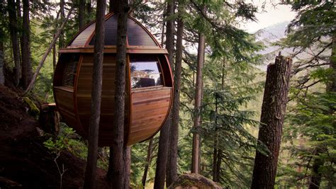 Hidden Egg Treehouse By Joel Allen : Building With Recycled Materials