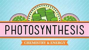 Video On Photosynthesis From Crash Course   Celluarenergy